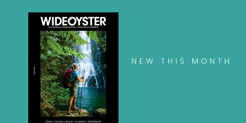 Wide Oyster Magazine Cover