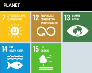 Libraries - Saving the Planet through 5 SDGs