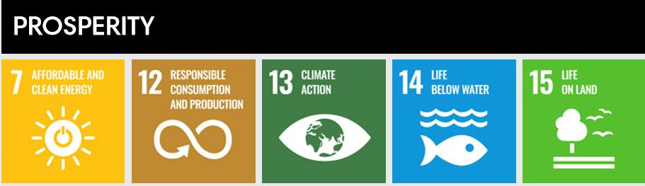 Libraries - growing prosperity through 5 SDGs